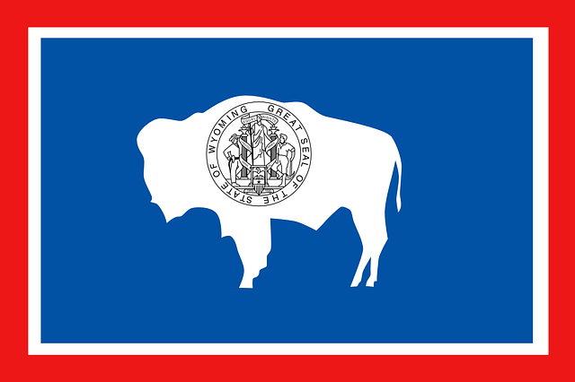 Wyoming state flag